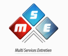 MSE France